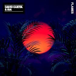 David Guetta/Sia - Flames
